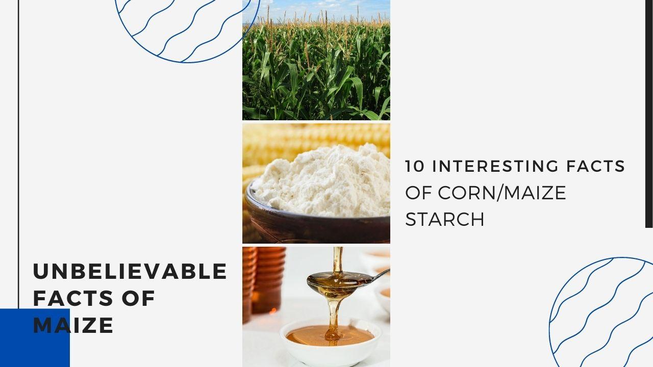cornstarch - blog banner
