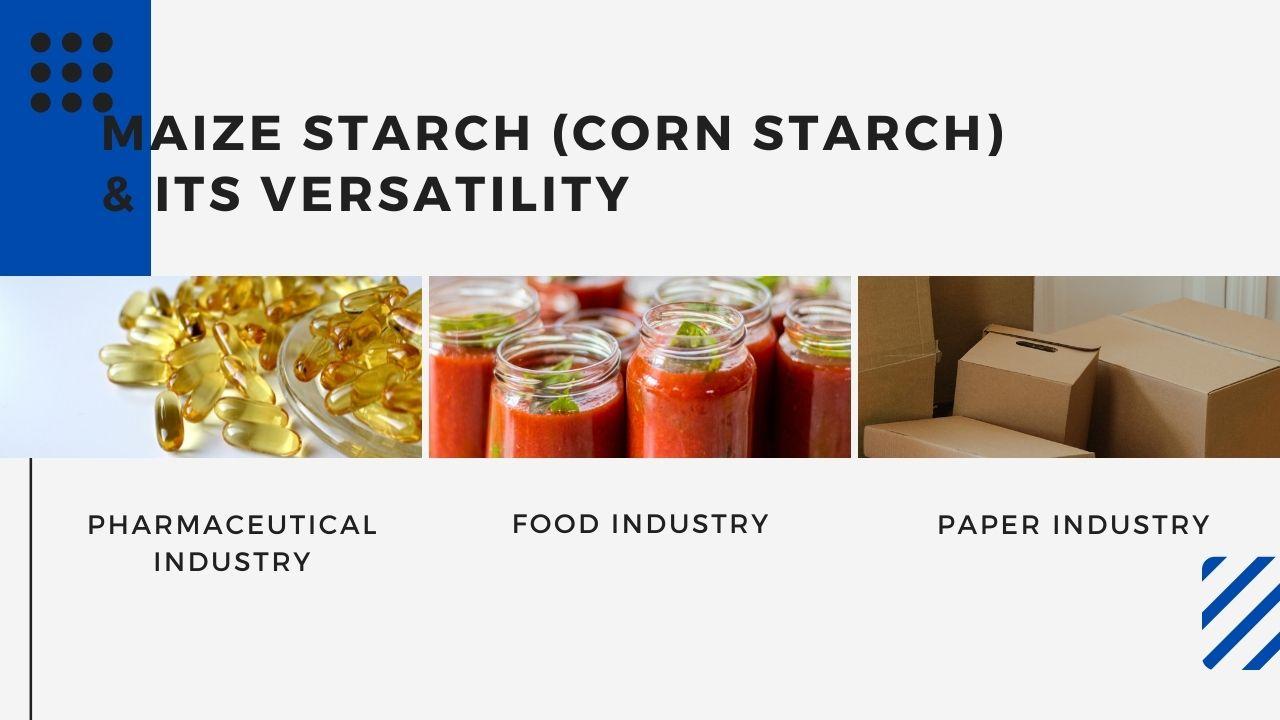 maize starch powder versatility - blog banner